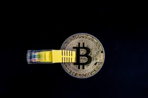Bitcoin's Future From The Viewpoint of Esteemed Crypto Analysts